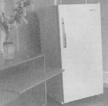 Холодильник-ОКА-111