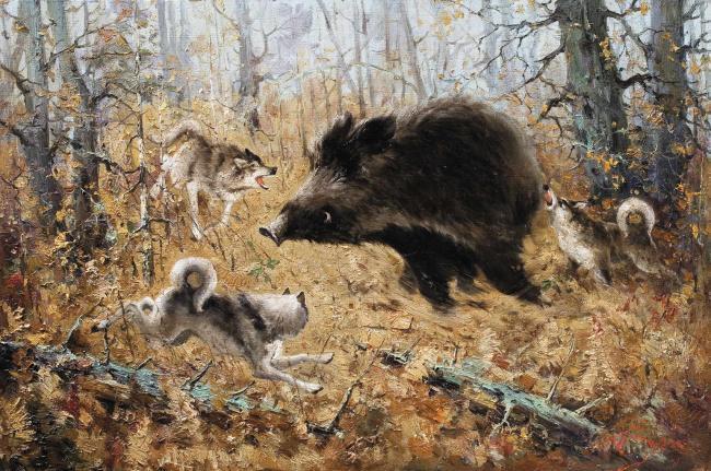 На каких зверей и птиц охотятся во Владимирской области, Владимир: с XIX в